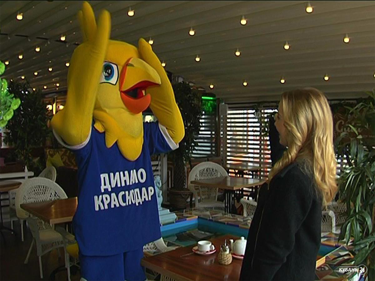 Талисманы кубанских команд: ястреб ВК «Динамо»