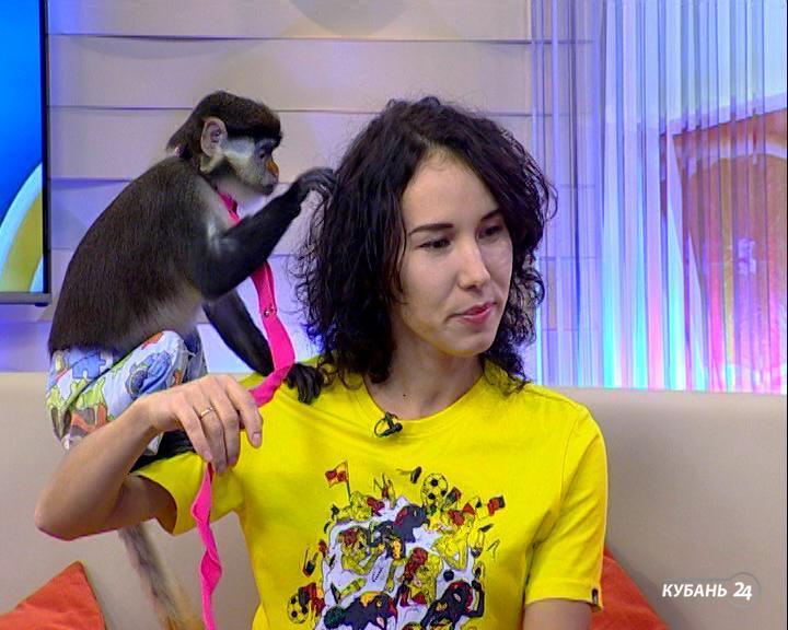 Владелица экзотических домашних животных Светлана Яценко: обезьянка Алина любит кататься на кошке