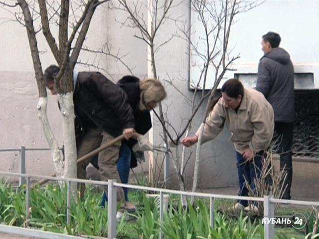 «Факты 24»: Кондратьев призвал жителей Кубани принять участие в субботнике, на Кубани начали проводить рейды по борьбе с коричнево-мраморным клопом