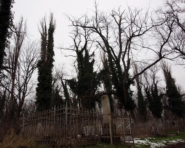 7 загадочных мест Краснодарского края