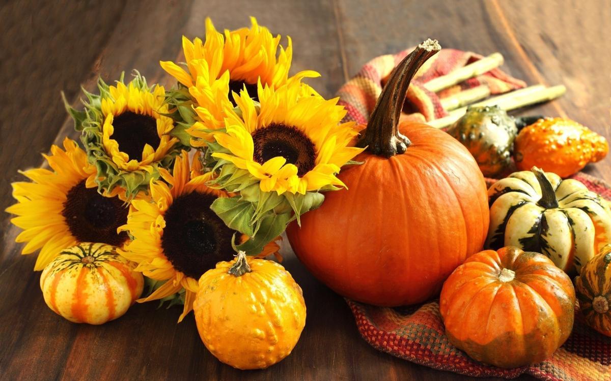 6 осенне-тыквенных рецептов