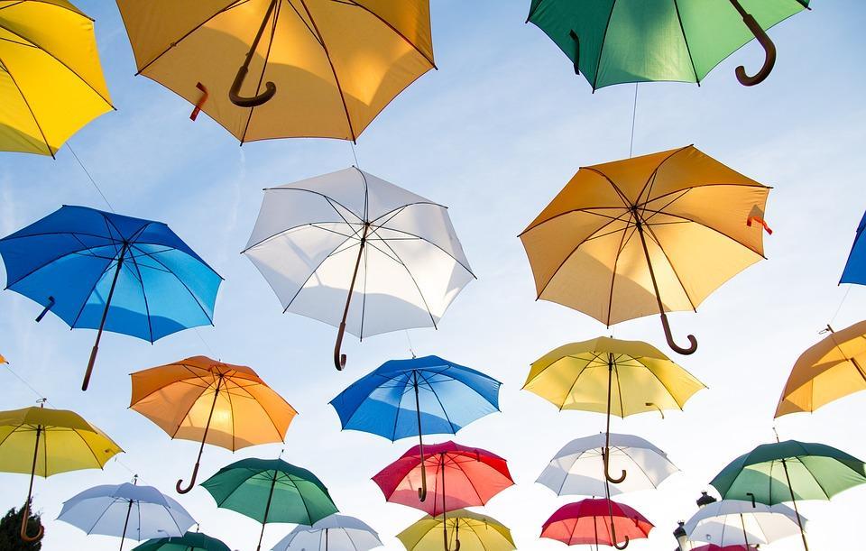 От «солнечника» и «парасоли» до зонтика