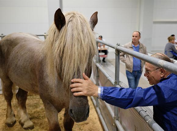 «Факты 24»: Кондратьев открыл «Кубанскую ярмарку» в Краснодаре, на Кубани ожидается рекордно низкая температура
