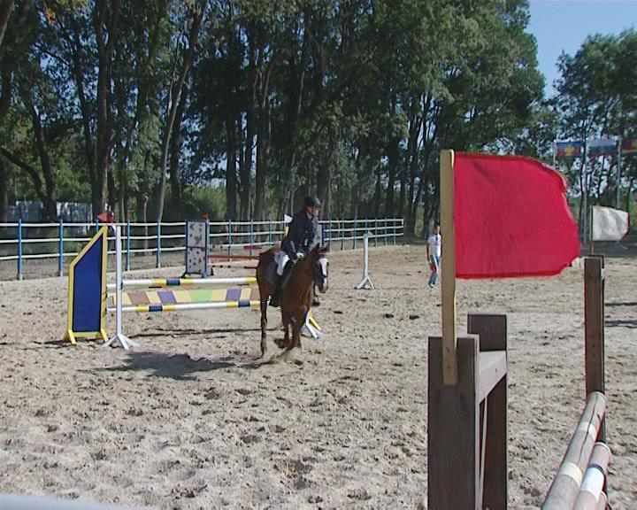 У кубанской школы конного спорта появится тренировочная база