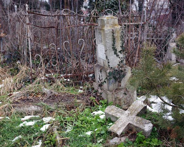 Краснодарцы призвали навести порядок на Всесвятском кладбище