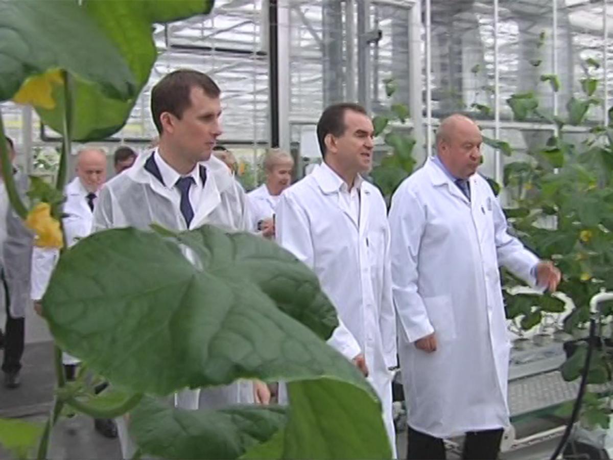 Вениамин Кондратьев оценил работу предприятий в Белореченском районе
