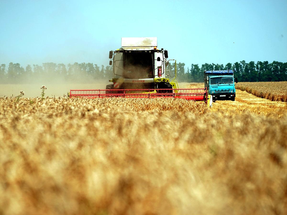 Спецрепортаж: Агропромышленный комплекс