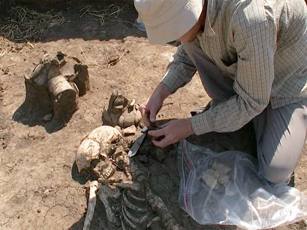 В Каневском районе обнаружили захоронения древних кочевников-скотоводов