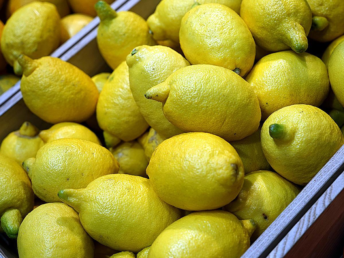 Сочинские специалисты рассказали, какие лимоны полезнее