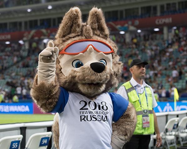 Как Краснодарский край готовится к чемпионату мира по футболу