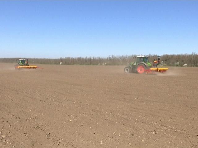 Специалисты агрохолдинга «Кубань» рассказали о ходе посевной кампании
