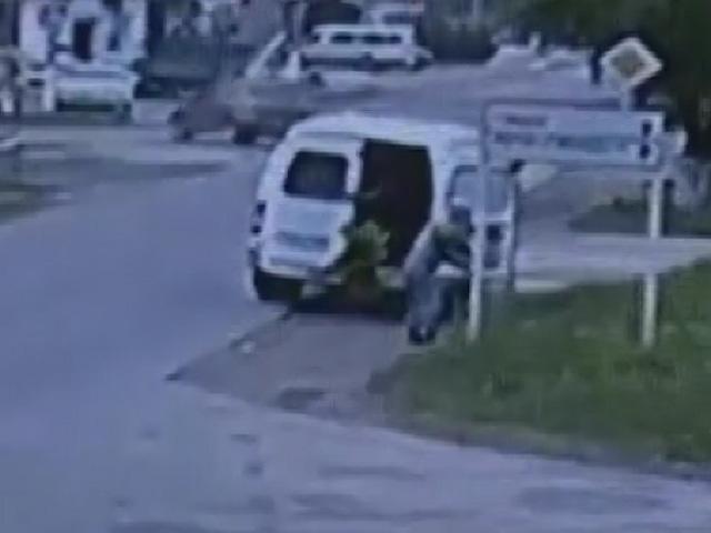 В Крымске полиция ищет очевидцев кражи 30 саженцев деревьев