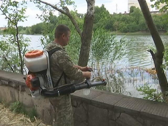 В Краснодаре экологи приступили к обработке озер спецпрепаратом