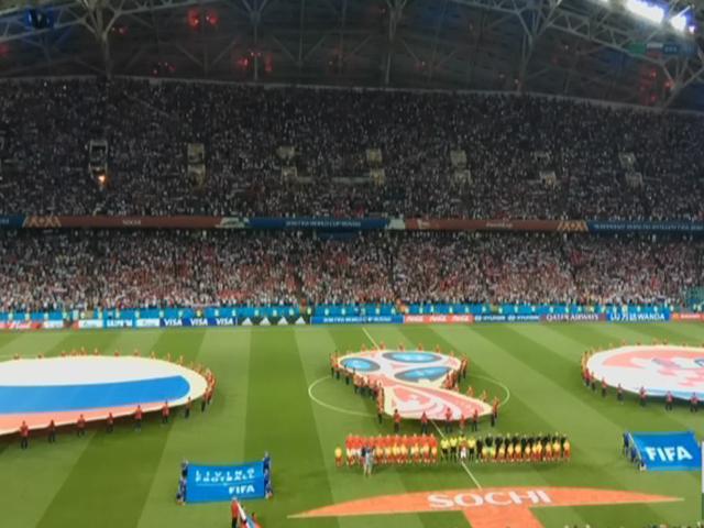 Какие матчи ЧМ по футболу прошли в Сочи на стадионе «Фишт»