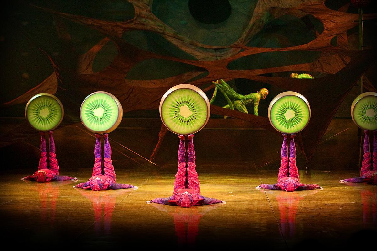 В Сочи начались гастроли семейного шоу OVO Cirque du Soleil