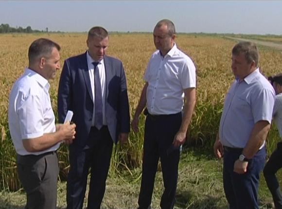 Федор Дерека осмотрел рисовые чеки в Славянском районе