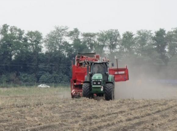 В Отрадненском районе началась уборка картофеля