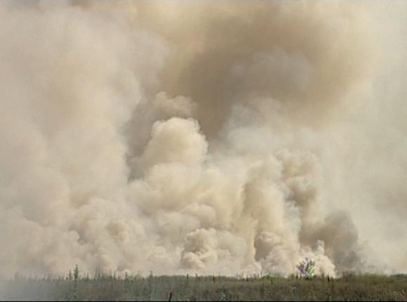 Причиной смога над Краснодаром стало выжигание рисовых полей