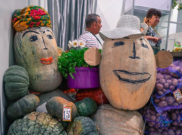 Что можно посмотреть на «Кубанской ярмарке»