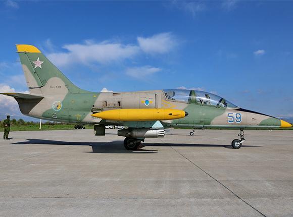 На берегу Азовского моря продолжаются поиски двух пилотов упавшего Л-39