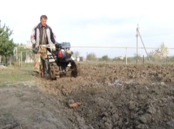 Фермер из Лабинского района на самодельном комбайне собрал 800 кг картофеля за час
