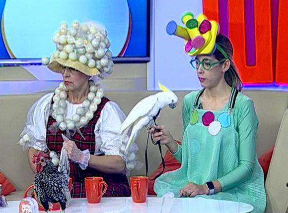 Дрессировщицы Майя и Людмила Гладковы: наши петух и попугай выступают на юбилеях и свадьбах