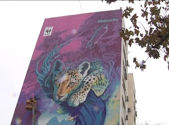 Георгий Куринов нарисовал в Краснодаре переднеазиатского леопарда