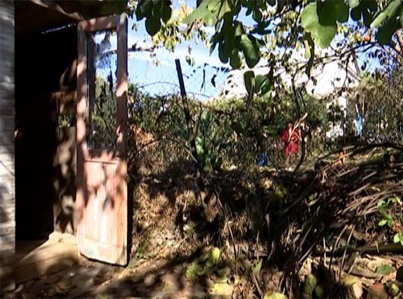 В Сочи сосед перекрыл пенсионерке выход из дома