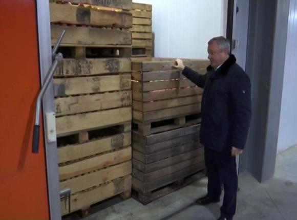 В Ейском районе открыли одно из крупнейших на Кубани фруктохранилищ