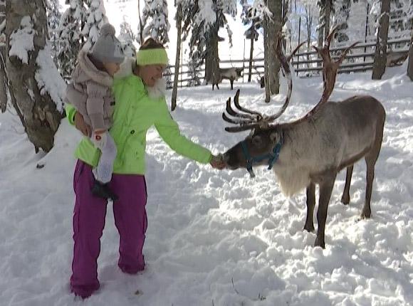 Как в Сочи пройдут новогодние праздники