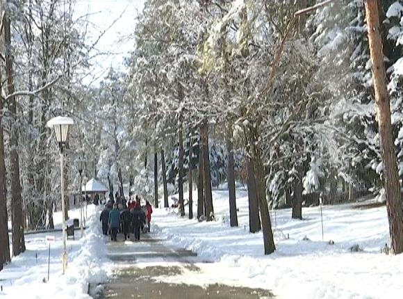 В Апшеронском районе для школьников провели пленэр «Повесть леса. Зима»