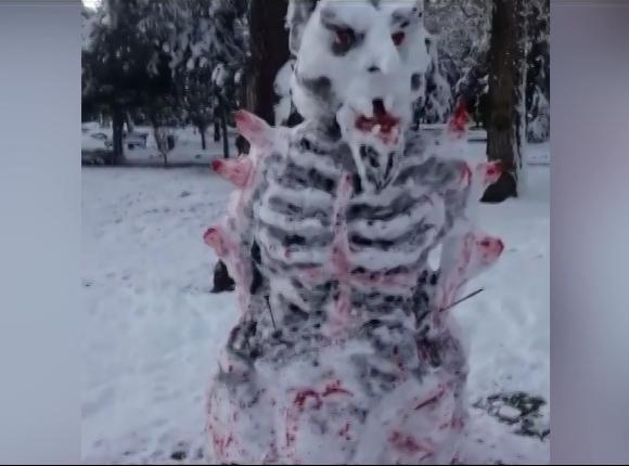 Как жители Кубани радовались снегу
