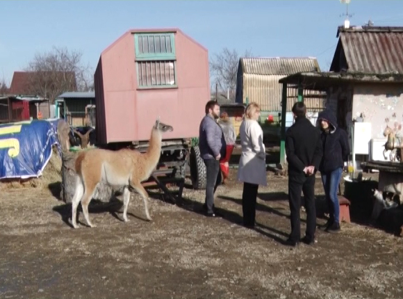 Армавирский зоопарк предложил всем желающим взять под опеку своих животных