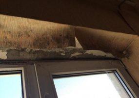 Закупленные для сирот Усть-Лабинского района квартиры оказались заражены плесенью