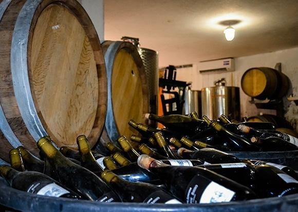 В Геленджике летом откроется винный завод «Шато де Талю»