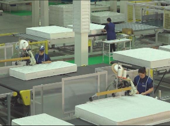 «Бизнес на Кубани». Производитель матрасов Vega