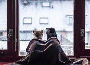 Как взбодриться зимой