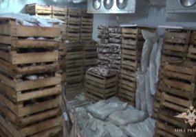 В Каневском районе по делу о незаконной рыбной ловле задержали 19 человек