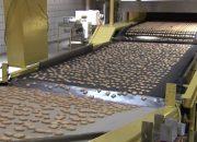 На Кубани 12 предприятий приняли участие в нацпроекте по росту производительности труда