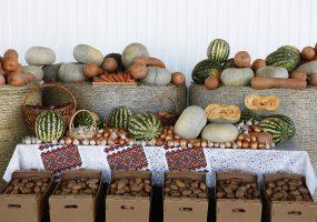 В Краснодарском крае реконструируют девять рынков и ярмарок