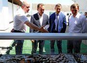 Кондратьев посетил рыбодобывающие предприятия Приморско-Ахтарского района