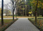 Для памятника жертвам авиакатастрофы над Черным морем выбрали участок в Адлере