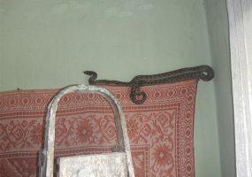 В Отрадненском районе спасатели поймали змею, которая заползла в спальню