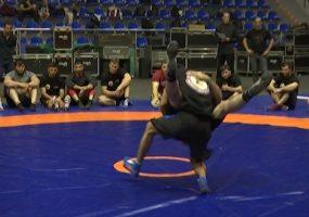 В Краснодаре пройдут матчевые встречи по спортивной борьбе