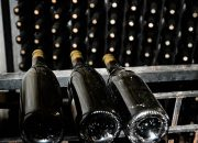 На Кубани планируют создать и продвигать бренд российского вина