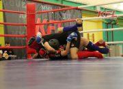 В Краснодаре пройдет второй этап турнира по ММА