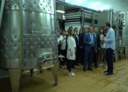 В Крымском районе обсудили краевой закон о поддержке производителей винограда