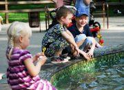 Стала известна программа Дня защиты детей в Краснодаре