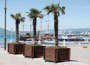Курорты Кубани с начала года посетили около 2,5 млн человек