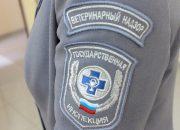На Кубани выявили 170 случаев нарушений ветеринарного законодательства